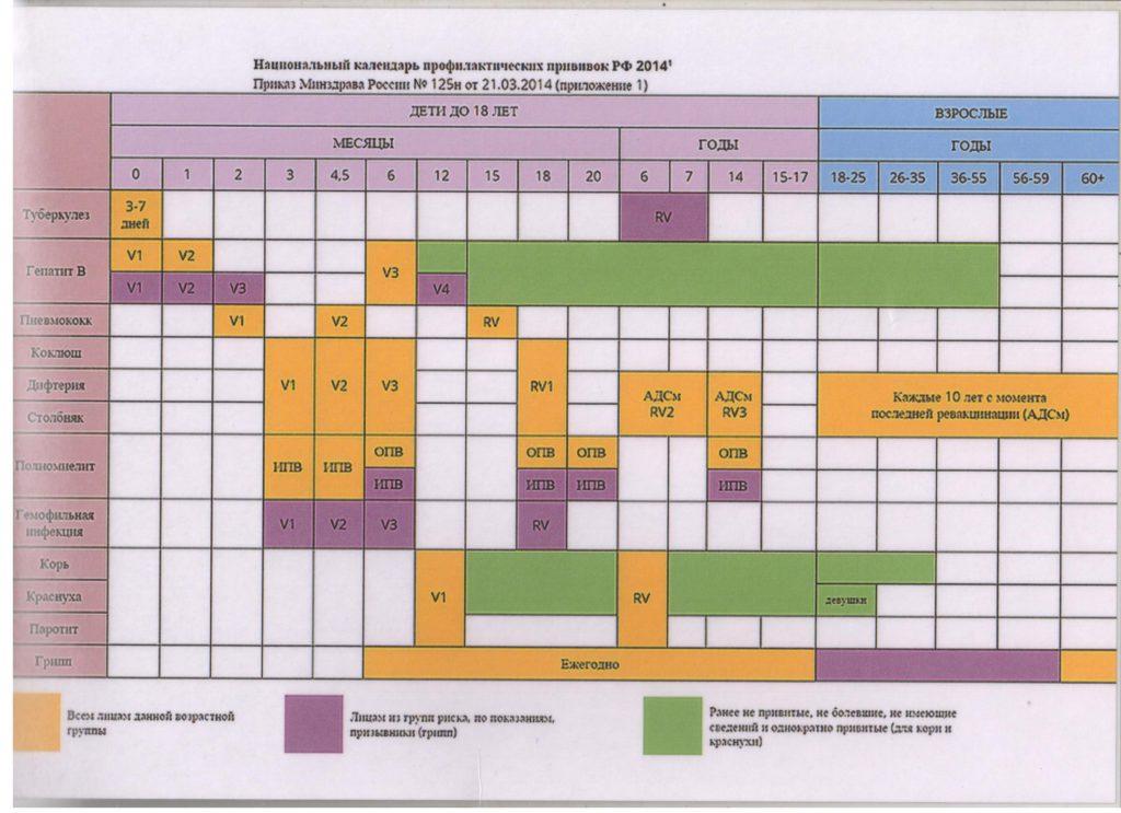 Это изображение имеет пустой атрибут alt; его имя файла - Национальный-календарь-профилактических-прививок-РФ-2014-e1575693492240-1024x743.jpg
